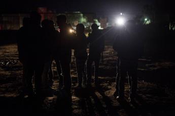 Gasdotto Tap: blitz della polizia, trasportati 11 ulivi