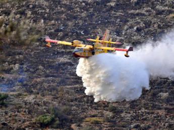 Caldo e incendi, situazione critica per fauna selvatica, posticipare caccia