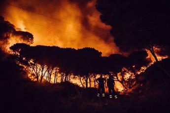 Se i boschi bruciano aumenta il rischio frane, l'allarme degli esperti
