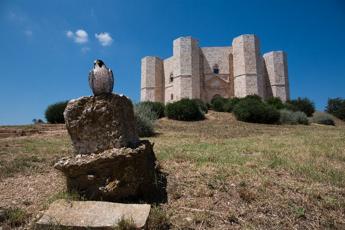 Castel del Monte, geometria perfetta e armonia dei numeri