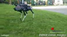 La Cina 'svela' il suo cane robot