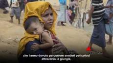 Violenze e orrori, Rohingya in fuga