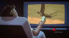 Bud Spencer e Terence Hill, il videogioco è realtà