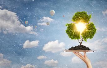 Nel 2017 riciclate 1,8 mln tonnellate di legno