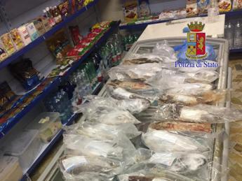 Pesce scaduto e blatte, minimarket dell'orrore a Roma