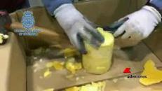 La cocaina viaggia negli ananas