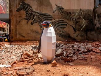 'Pinguini in città', Greenpeace in Antartide per la più grande area protetta