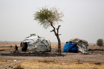 EU and FAO scale up efforts to boost famine resilience with €70m donation