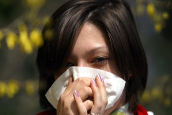 Essere allergici protegge da forme più gravi di Covid, studio dell'Idi
