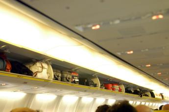 'Va messo in cappelliera', cane muore in aereo