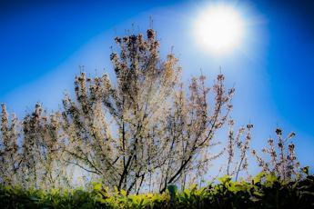 Troppa luce e poco sonno: maledetta primavera