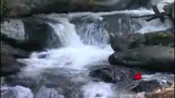 Le sorprendenti proprietà dell'acqua nelle diluizioni omeopatiche