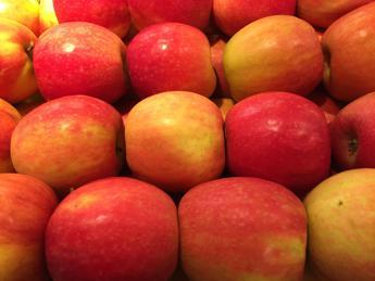 Antiossidanti dagli scarti della mela