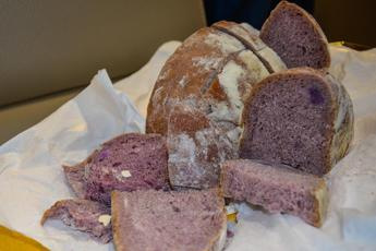 Arriva Well-Bred, pane viola elisir della salute made in Italy