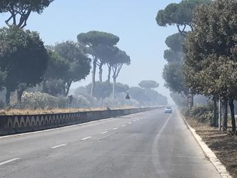 Roma, incendio nella pineta di Castel Fusano