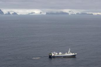 Pesca del krill, stop nell'Antartico