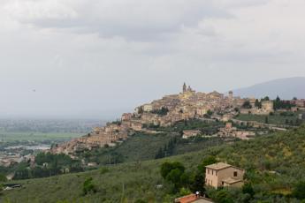 Fascia di ulivi tra Assisi e Spoleto patrimonio Fao