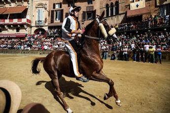 Palio di Siena, vince la Contrada della Lupa