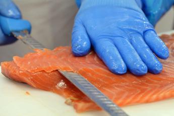 Rischio listeria per salmone affumicato, ritirato lotto