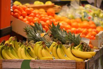 Aghi nella frutta, allarme in Australia