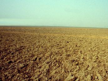 Conflitti e clima, servono aiuti alimentari in 39 Paesi