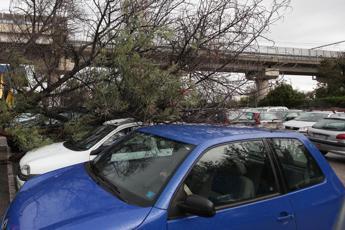 Raffiche di vento a Napoli, crolla cartello autostradale