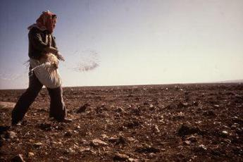FAO urges nations to boost response to climate change in agricultural sector