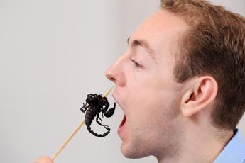 Insetti nel piatto, 4 italiani su 10 disposti a provare
