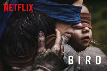 Bird Box Challenge: Netflix 'mette in guardia' dalla pericolosa mania