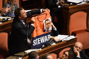 Senatore FI con gilet 'steward' e foto Di Maio