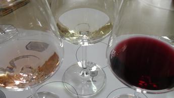 Nel vino rosso un alleato per astronauti su Marte