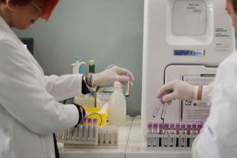 New PCR-based test allows fast detection and differentiation of dermatomycosis pathogens