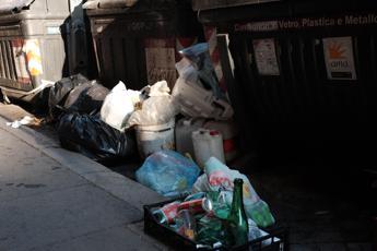 Villani (Sip), 'Carenze nello smaltimento dei rifiuti danneggiano i bimbi'
