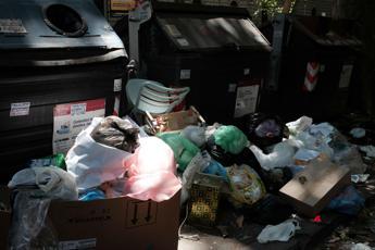 Roma, la presidente Ama riprende i rifiuti: Hugh Grant le strappa telefono