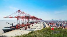 Dogane portuali digitalizzate, progetto al via
