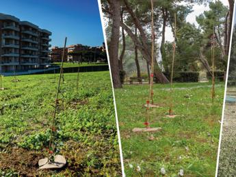 Con Mosaico Verde oltre 233mila alberi saranno piantati