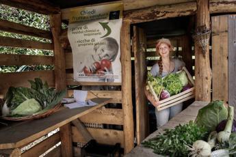 Niente imballaggi né plastica: a Ossana il supermarket green