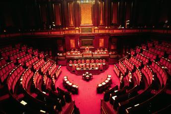 Al Senato la maggioranza giallorossa è 'appesa' ai più piccoli