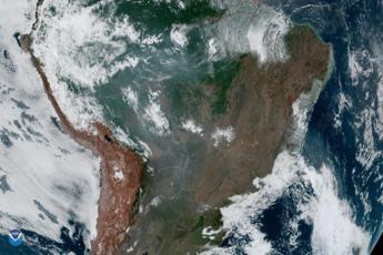Perché l'Amazzonia brucia?