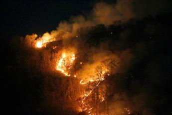 Amazzonia, Bolsonaro: Incendi nella media, stop a fake news