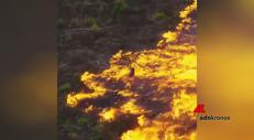 Amazzonia, brucia il polmone del mondo