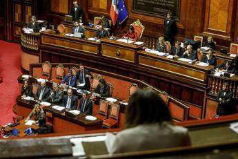 Da M5S a Italia Viva, rumors su senatrice Vono