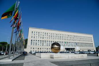 Soleimani, Farnesina: Sviluppi molto preoccupanti, agire con responsabilità
