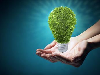 Grieco: Sostenibilità architrave di tutta la strategia Enel