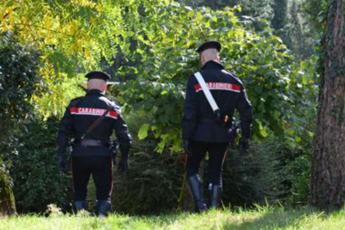 Omicidio-suicidio nelle campagne di Foggia