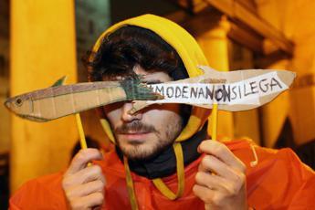 Manifesto delle Sardine: Cari populisti, avrete mal di mare