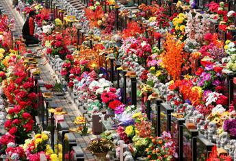 Ognissanti, fiori ai defunti da 7 milioni di italiani