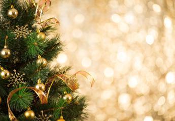 'Onorevole Natale', ecco il canto bipartisan di deputati e senatori