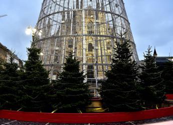 Consigliere M5S: Albero di Natale a Milano è gabbia per piccioni