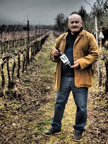 Ripartiamo dalle nostre eccellenze,ripartiamo dal vino italiano con il giusto Piglio